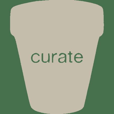 Curate
